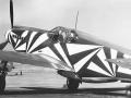 dazzle_plane